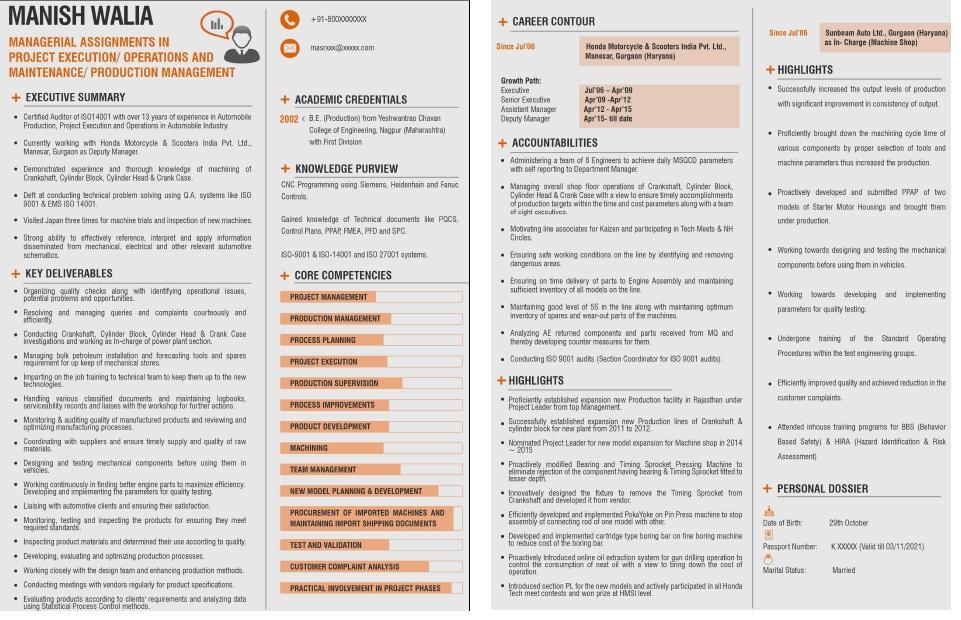 visual CV sample 2